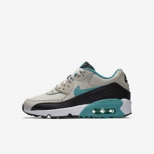 Boys Light Bone/Black/White/Sport Turquoise Nike Air Max 90 Lifestyle Shoes 833412-019