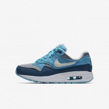 Nike Air Max 1 Lifestyle Shoes For Boys Wolf Grey/Light Blue Fury/Blue Force/White 807602-003