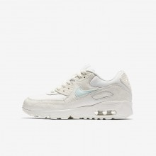 Nike Air Max 90 Lifestyle Shoes For Girls Sail/Igloo 833340-107
