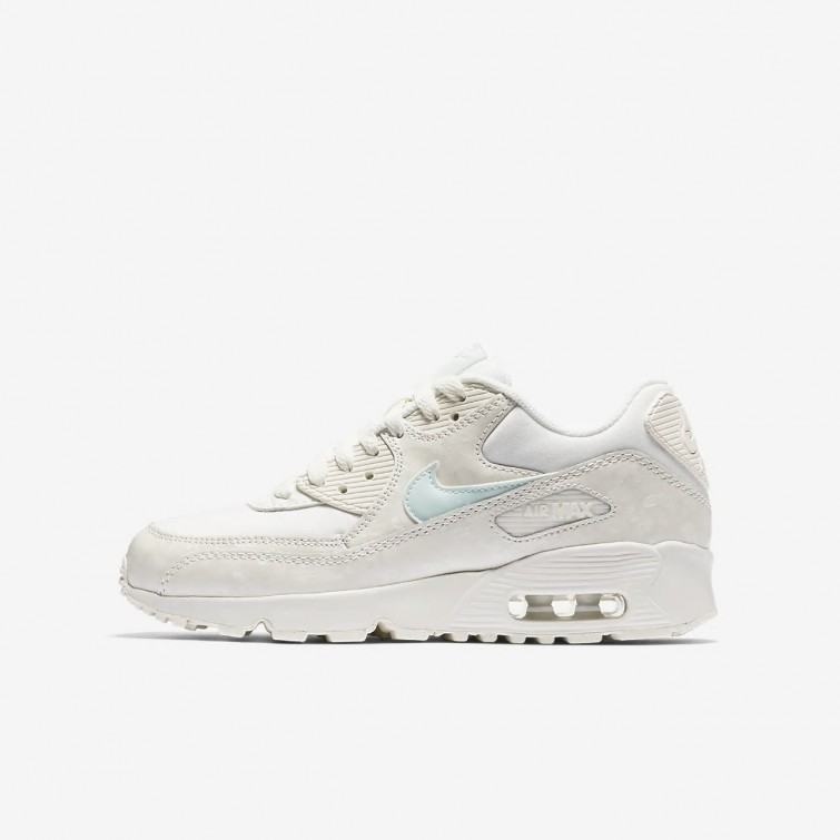 wholesale dealer 3ec30 7f54b Chaussure Casual Nike Air Max 90 Fille Clair Grise 833340-107
