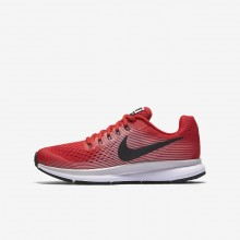 Boys Speed Red/Vast Grey/Black/Anthracite Nike Zoom Pegasus Running Shoes 881953-601