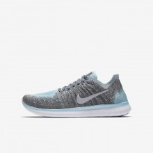 Boys Metallic Silver/Cool Grey/Dark Grey/Reflect Silver Nike Free RN Running Shoes 881974-002