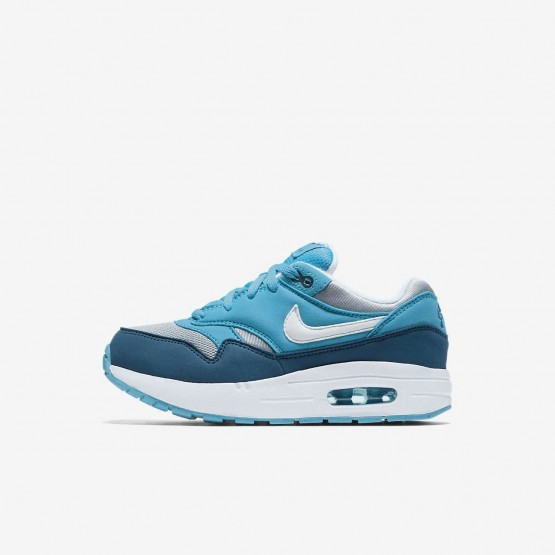 Boys Wolf Grey/Light Blue Fury/Blue Force/White Nike Air Max 1 Lifestyle Shoes 807603-003