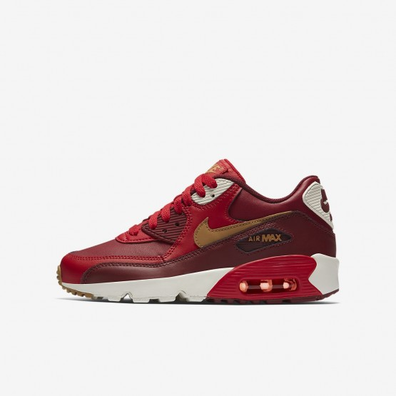 Boys Game Red/Team Red/Sail/Elemental Gold Nike Air Max 90 Lifestyle Shoes 833412-602