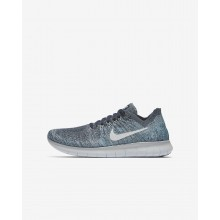 Boys Blue Fox/Wolf Grey/White/Pure Platinum Nike Free RN Running Shoes 881973-402