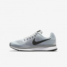 Boys Pure Platinum/Cool Grey/Wolf Grey/Anthracite Nike Zoom Pegasus Running Shoes 881953-004