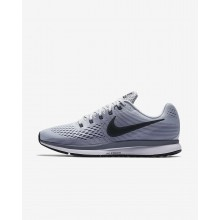 Mens Pure Platinum/Cool Grey/Black/Anthracite Nike Air Zoom Running Shoes 880555-010